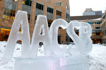 AACSB Ice Sculpture