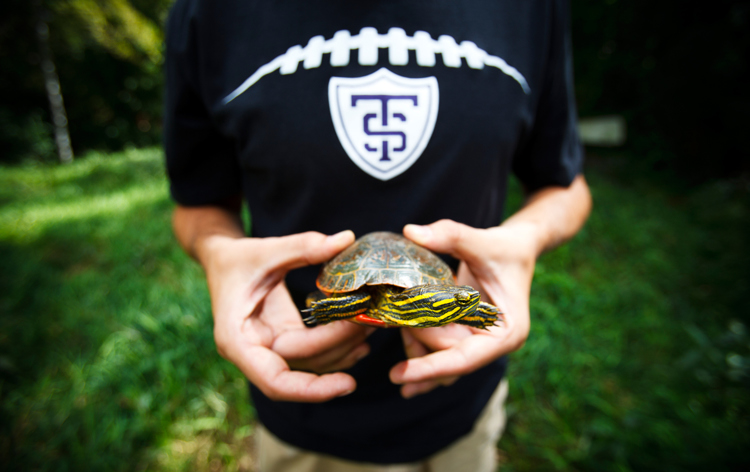 Senior biochemistry student Grant Schmura holds a painted turtle. (Photo by Mark Brown)