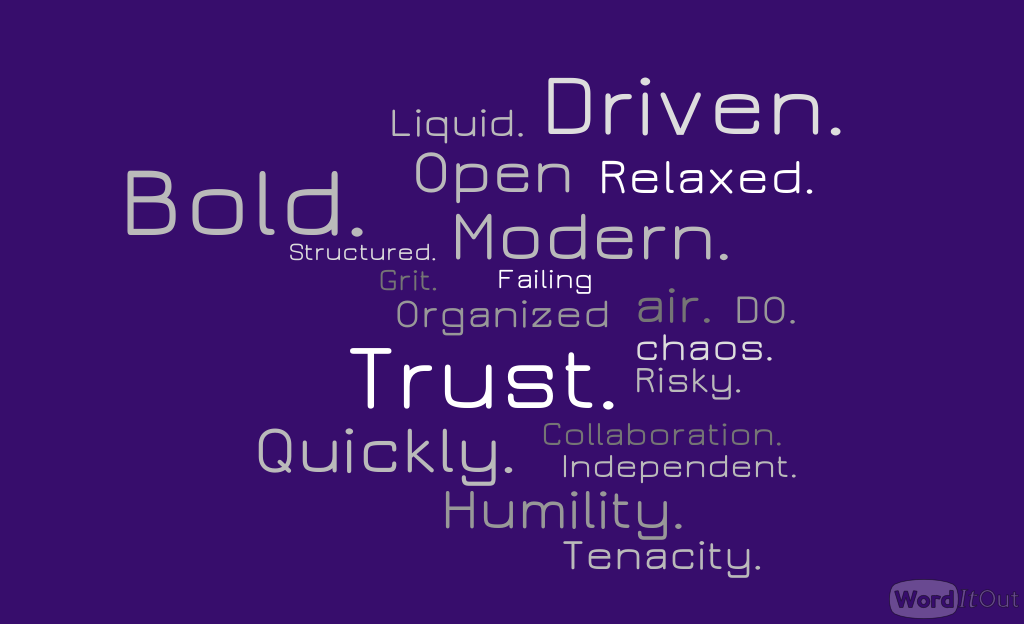Relaxed. Independent. Trust. Humility. Open air. Collaboration. Modern. Failing Quickly. Risky. Driven. Tenacity. Bold. DO. Grit. Structured. Organized chaos. Liquid.