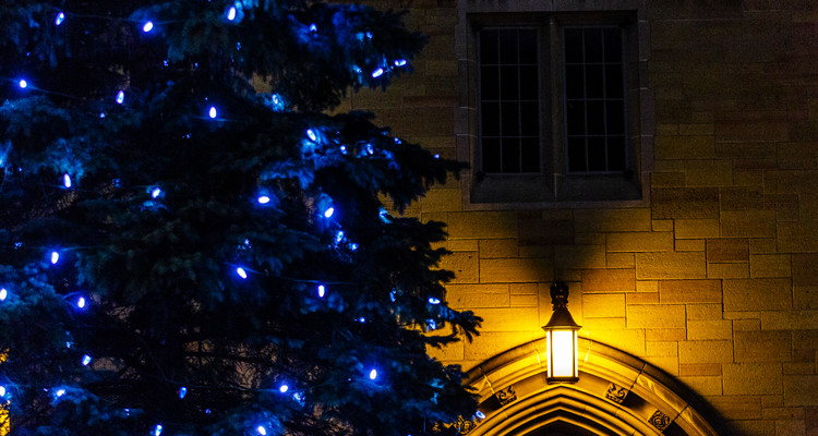 A tree with blue Christmas lights and the John R. Roach Center for the Liberal Arts on the St. Paul campus on the evening of December 5, 2014.