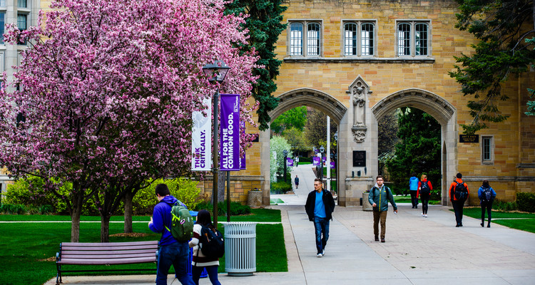 Students walk past The Arches amidst trees covered in pink blossoms April 26, 2016.