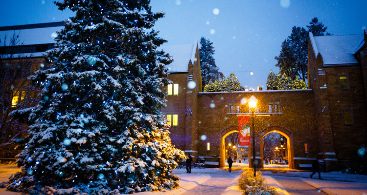 The Arches (with Creche on top) are seen behind falling snow and a glowing lamp with a Christmas banner December 4, 2013.