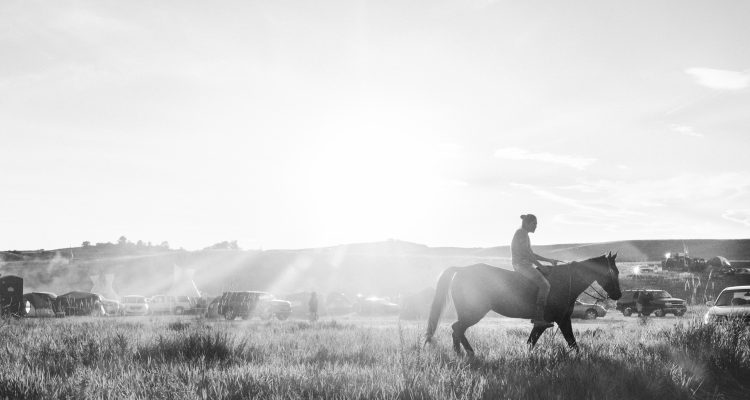 Standing Rock - person on horse
