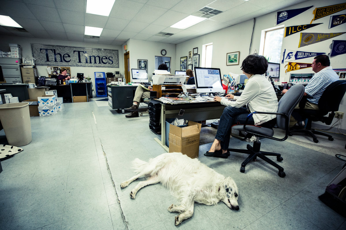 Mabel the news hound takes a break on the floor of the Storm Lake Times news room.