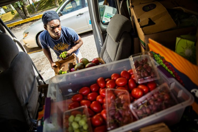 BrightSide Produce employee Steven Fuller organizes produce while making weekend deliveries to neighborhood stores for BrightSide Produce in Minneapolis on September 30, 2017. BrightSide, a project conceived at St. Thomas and run with the help of students, brings healthy food (some of which comes from the St. Thomas stewardship garden) to underserved communities.
